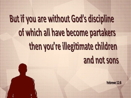 hebrews 128 but if you are without discipline of which