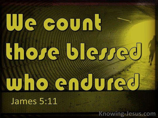 James 5:11 We count those blessed who endured You have ...
