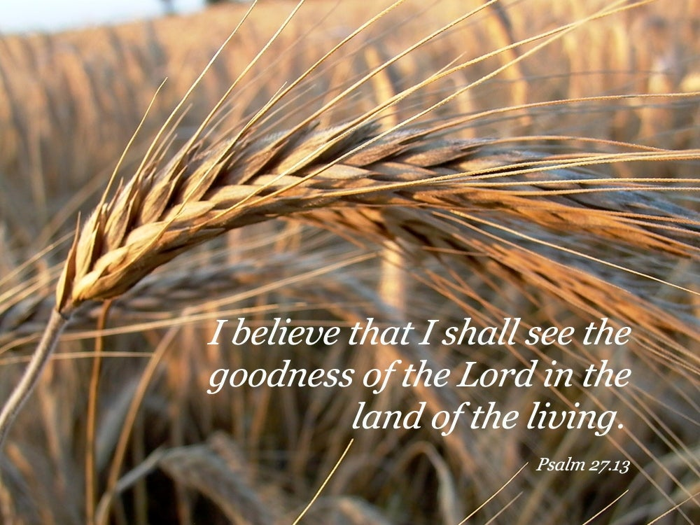 Psalm 27:13 I would have despaired unless I had believed