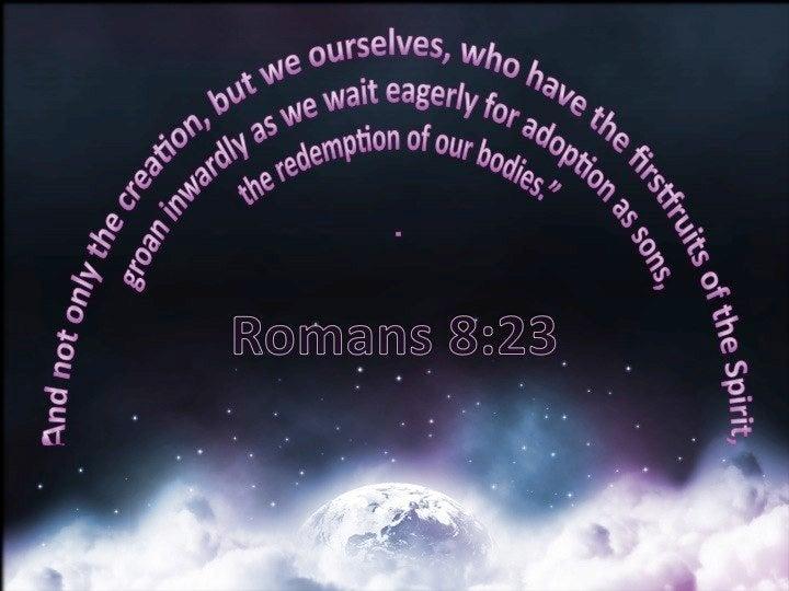 Romans 8-23